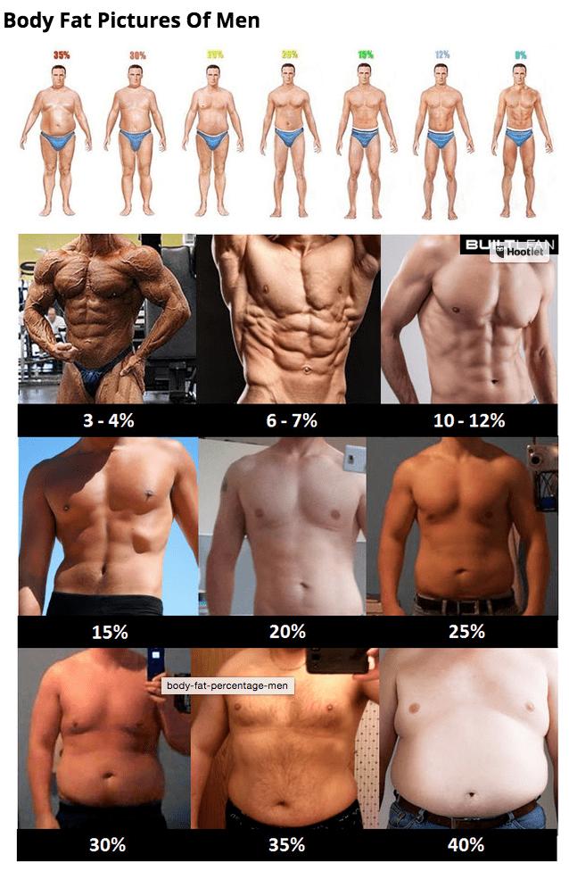 Body Fat Estimate 54